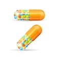 Vitamine Pills with Granules vector image vector image