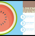 watermelon fruit infrographic design vector image