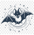 silhouette of bats night vector image