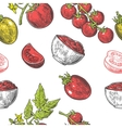 Seamless pattern with Tomato half slice and vector image