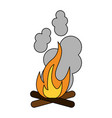 bonfire fire icon image vector image