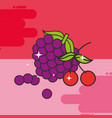 bunch grapes and cherries fresh delicious vector image