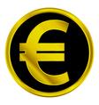 Euro sign button vector image