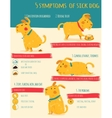 Five simptoms of sick dog Infographics vector image