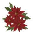 flower poinsettia cartoon christmas flower vector image