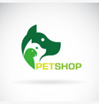 group of pets - dog cat parrot on white vector image