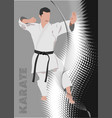 karate silhouettes exercises vector image vector image