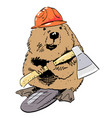 cartoon image of beaver vector image vector image