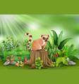 cartoon of lemur sitting on tree stump with green vector image vector image
