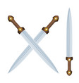 color image two crossed caucasian daggers on a vector image vector image