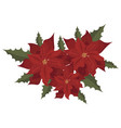flower poinsettia cartoon christmas flower vector image vector image