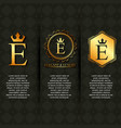 gold luxury elegant letter e calligraphic vector image vector image