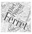 What Do Ferrets Eat Word Cloud Concept vector image vector image