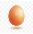 egg with shadow vector image