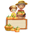 farmer with pumpkin wooden banner vector image vector image