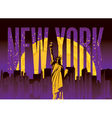 new York night vector image vector image