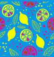 pop colors citrus seamless pattern vector image