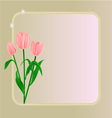 Tulips spring flowers background vector image