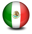 A soccer ball from Mexico vector image vector image