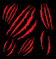 animal claws scratching tiger or bear paw vector image vector image