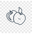 apple concept linear icon isolated on transparent vector image vector image