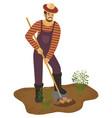 farmer man with shovel is digging potato in garden vector image