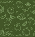 fruits seamless pattern organic vegetarian food vector image vector image