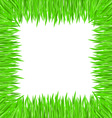 grass frame square vector image vector image
