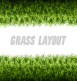 Grass Layout vector image
