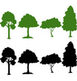 set of silhouette plant vector image vector image