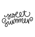 summer lettering composition vector image vector image