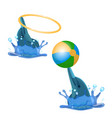 cute trained dolphins playing with hoop and color vector image
