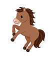 adorable cartoon horse character vector image vector image