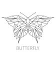 Butterfly The schematical image from geometrical vector image