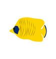chaetodon auriga butterflyfish vector image vector image