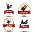 chicken label vector image vector image