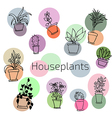 design set of house plants in colorful circles vector image vector image