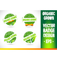 Organic grown Badge Logo vector image vector image