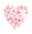 pink flowers heart isolated on white vector image vector image