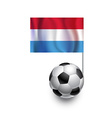 Soccer Balls or Footballs with flag of Luxembourg vector image