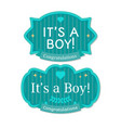 babyborn boy badge or label vector image vector image
