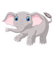 cartoon baelephant on white background vector image vector image