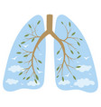human lungs respiratory system healthy lungs vector image vector image