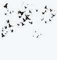 silhouette a flock birds black contours of vector image vector image
