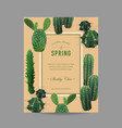 tropical cactus summer background vector image vector image