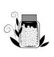 bottle with gomeophatic granulas vector image vector image
