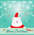cute teddy bear merry christmas celebrated card vector image