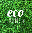 Eco Friendly Poster vector image vector image