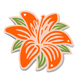 Orange lily vector image vector image