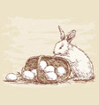 rabbit with basket vector image vector image